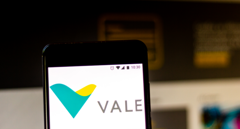 Бразилия: Vale и СССС (Китай) построят сталелитейный завод за $450 млн www.shutterstock.com
